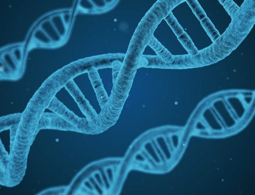 Pharmaceuticals and Biotechnology: How did they get their start?